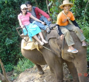 Elephant riding in Mae wang
